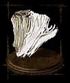 elizabeth-s-mushroom.png