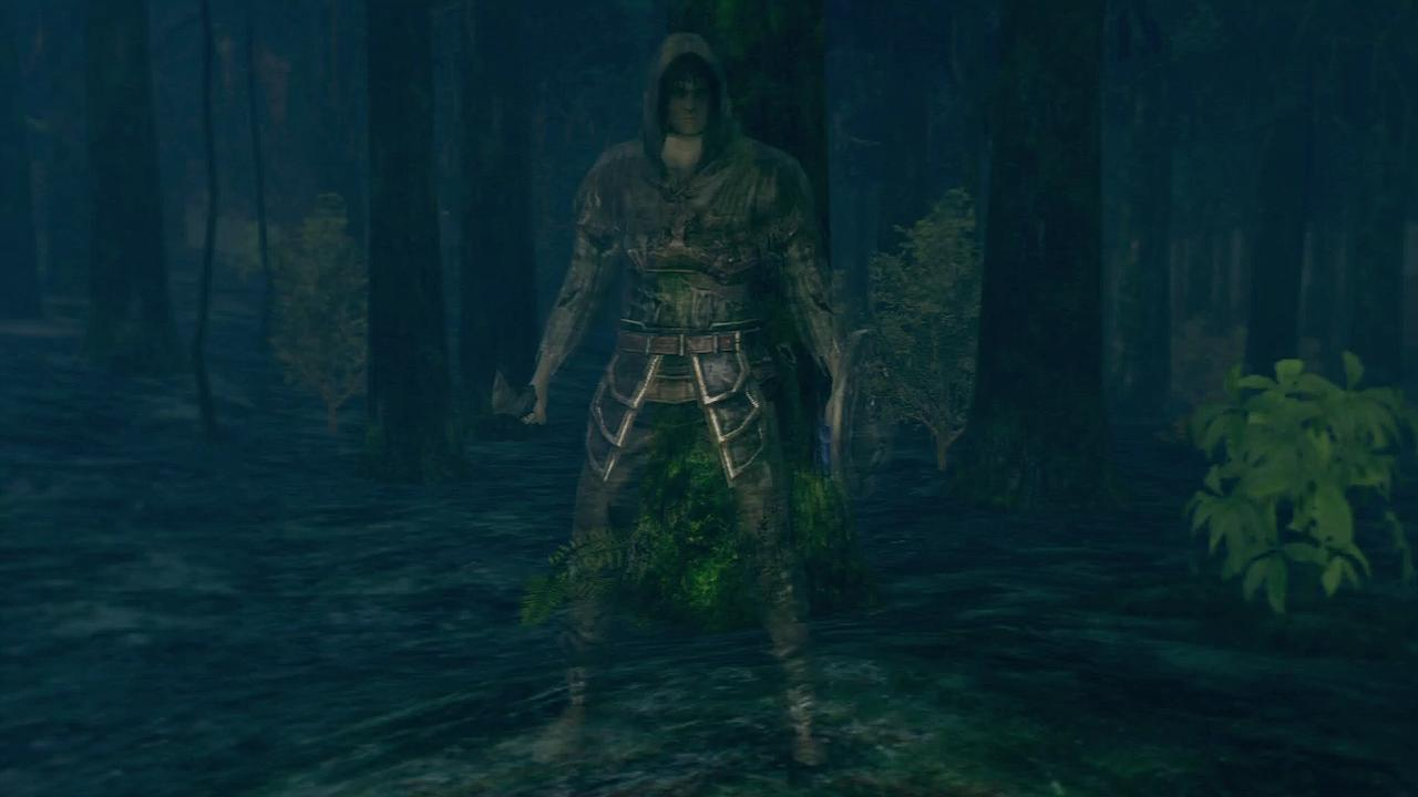 Clan of Forest Protectors - Dark Souls Wiki